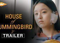House of Hummingbird (2018) | Beol-sae