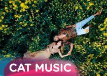 Bob, Narcisa & What's UP – PrimaVara | Official Video