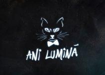 The Motans – Ani Lumina | Official single